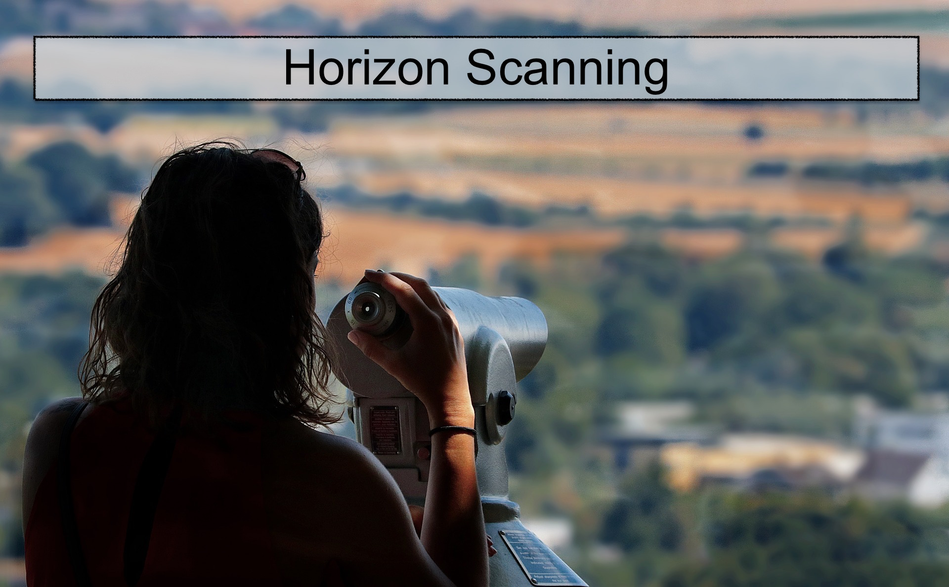 Strategic Conversations for Strategy Development: Horizon Scanning, TOWS & Scenarios